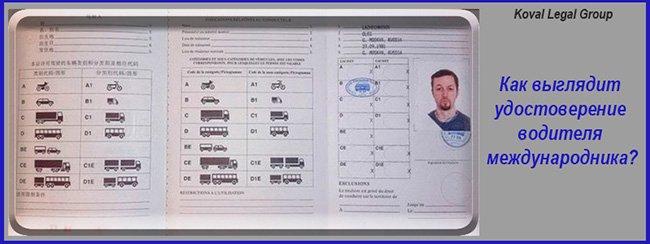 международные водительские права Киев