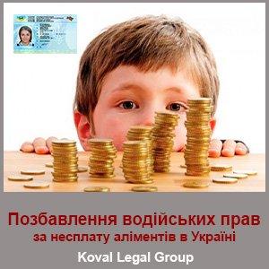 Позбавлення водійських прав за несплату аліментів в Україні